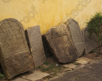 Cochin013 