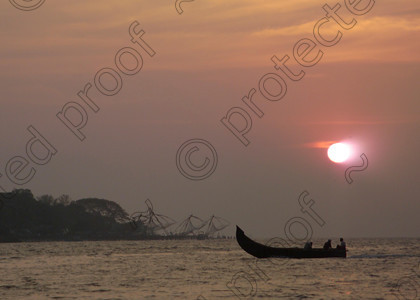 Cochin Chinese Fishing Nets 048 