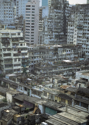 MIL08021 
